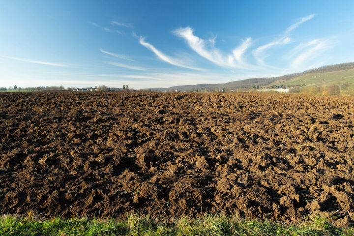 Schwermetalle belasten den Boden