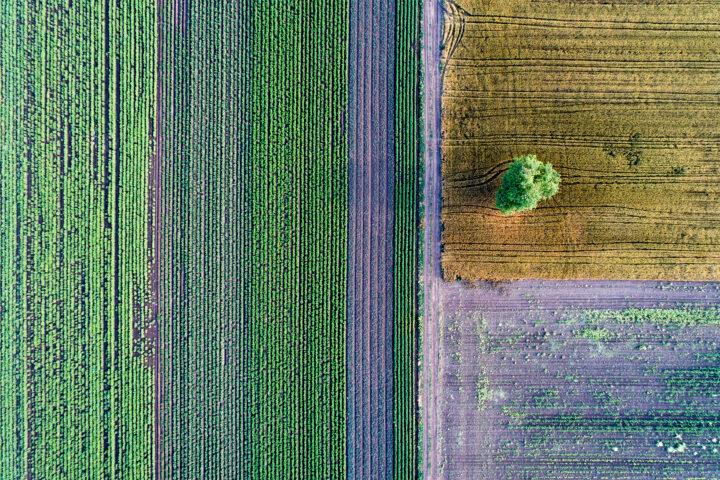 Hinkende Nachhaltigkeit schadet der Umwelt