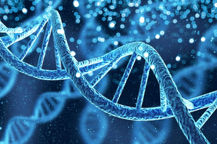 Das überholte Bild vom sakrosankten Genom