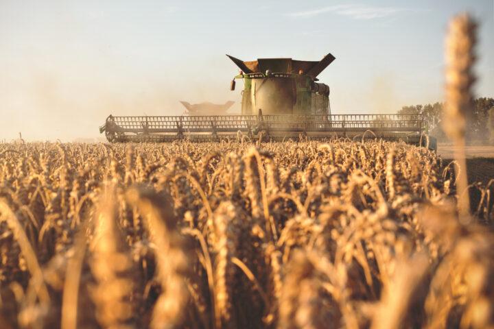 Agrarproduktion der EU sinkt um bis zu 20 Prozent